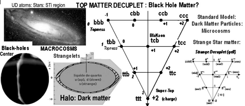 dark macrocosmos